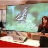 关注2020年7月上海显示技术及应用创新展览会