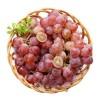 自酿提子酒-型酿水果酒千赢国际娱乐qy8