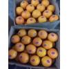 珠海市咨询订购赣南脐橙现摘现卖