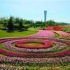 2019北京旅游景区景点及设施博览会共同开?#35789;?#19994;的艳阳天